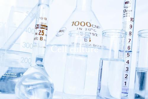 リガード細胞培養事業